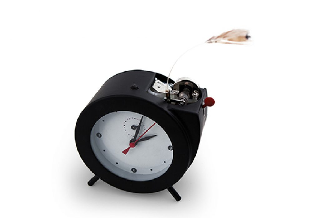 Kikkerland Tweet Alarm Clock Cute Stuff to Buy