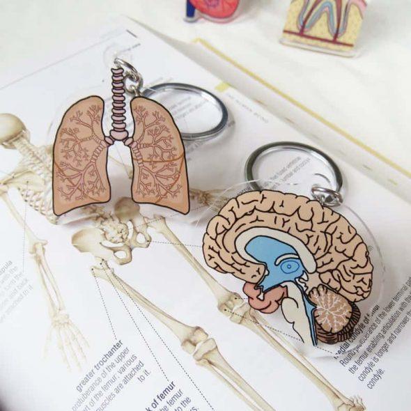 LoraksHandmade Brain and Lungs Anatomy Keychain