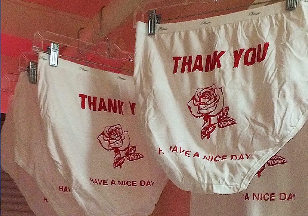 Make Fart Thank You Undies Underwear