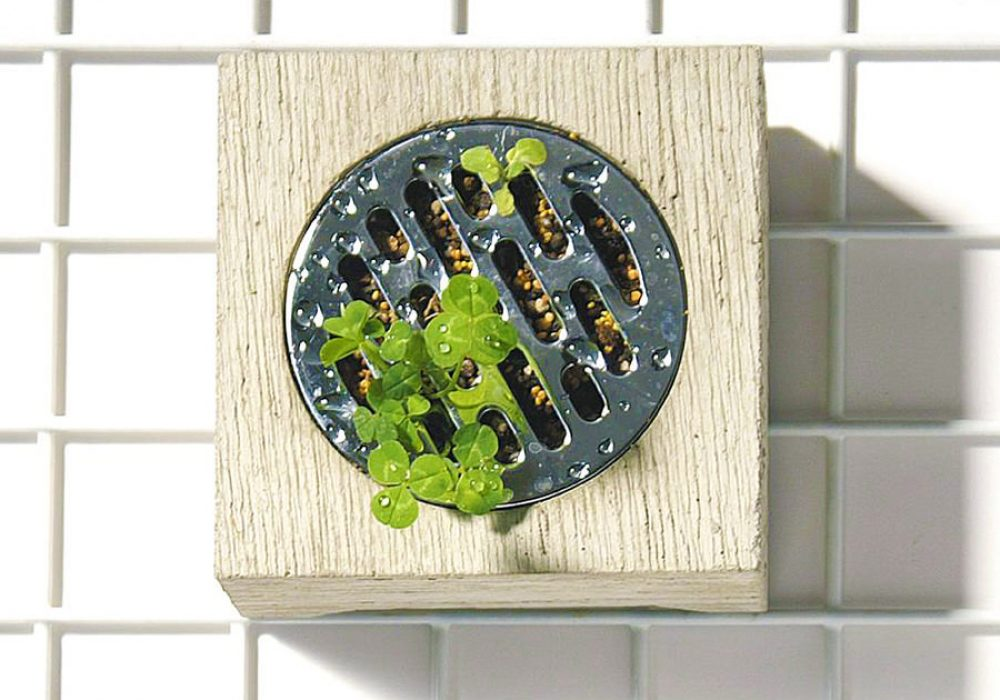 MollaSpace Hasui Planter Cool Planter to Buy