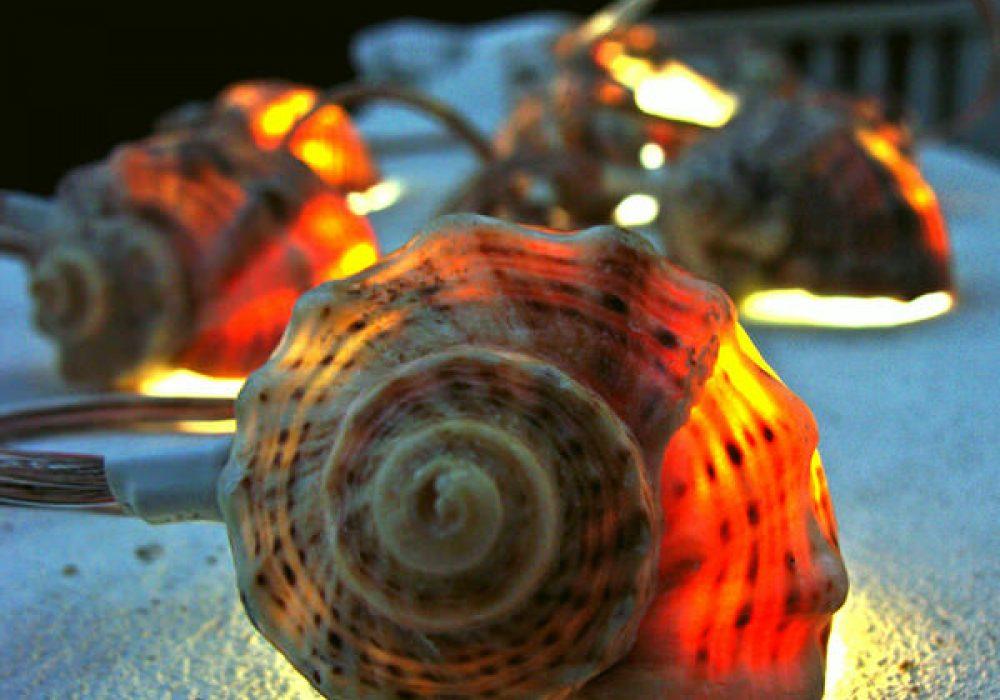 More than Sea Glass Sea Shell Garland Strand of Lights Tropical Lighting