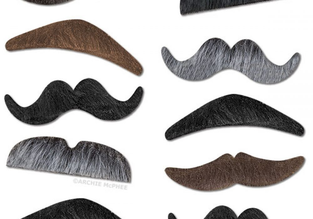 Mustache Party Assorted Hairs