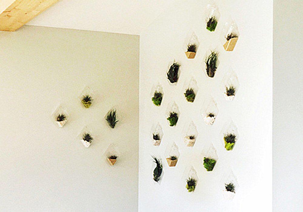 New Dream World Rhombus Glass Wall Vase Home Display