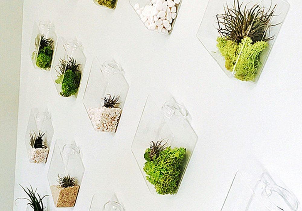 New Dream World Rhombus Glass Wall Vase Plant