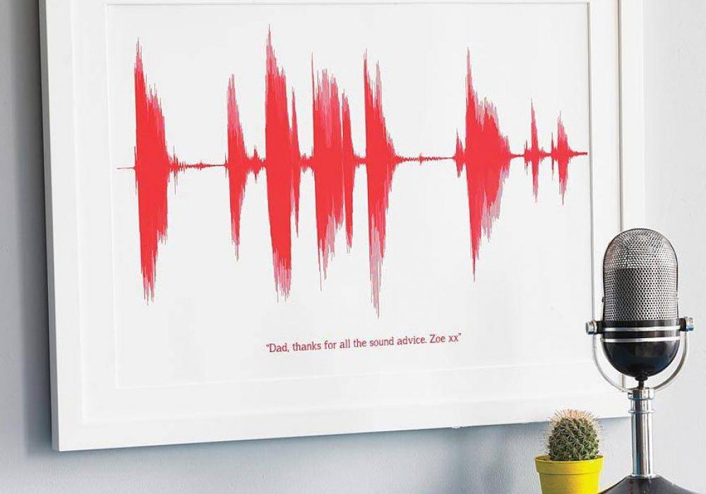 Newton and the Apple Your Voice Sound Wave Print Nostalgic Gift Idea