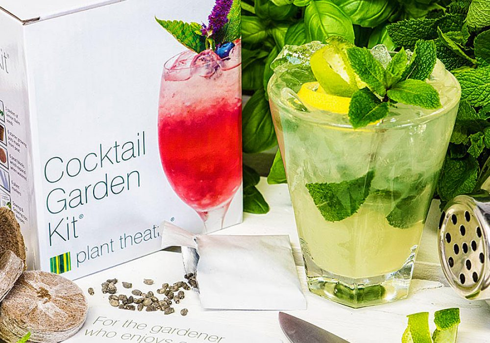 Plant Theatre Cocktail Garden Kit Chic Gift to Buy