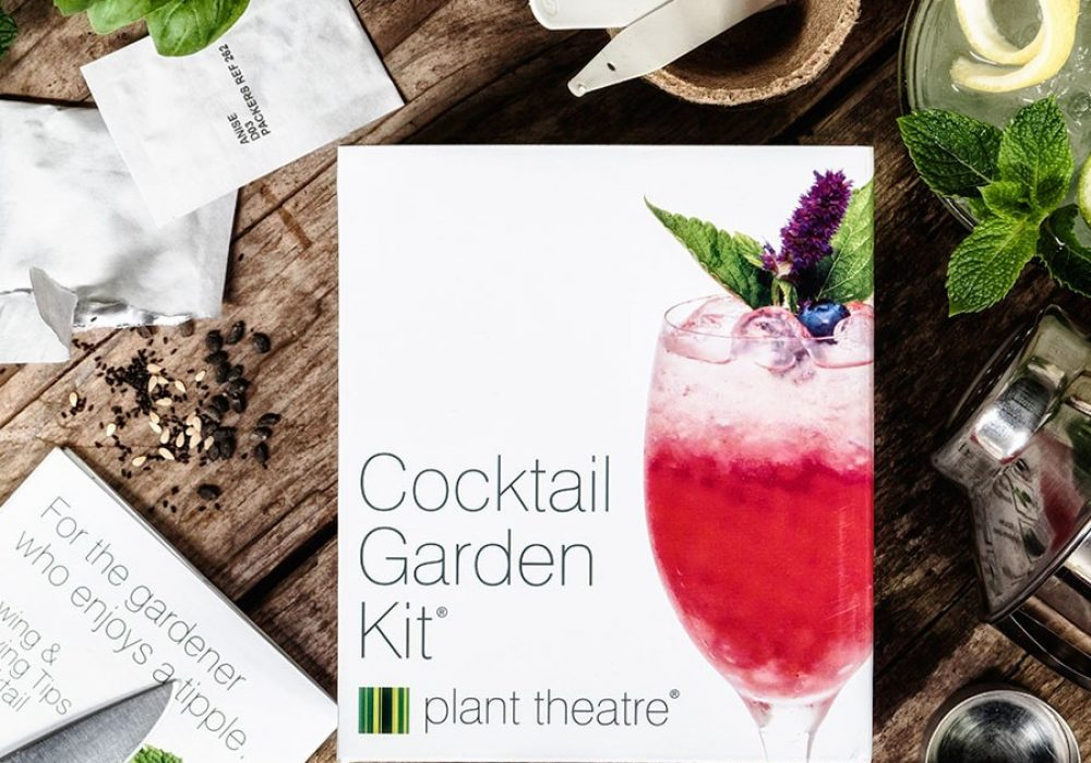 Plant Theatre Cocktail Garden Kit Unique Gift Idea to Buy