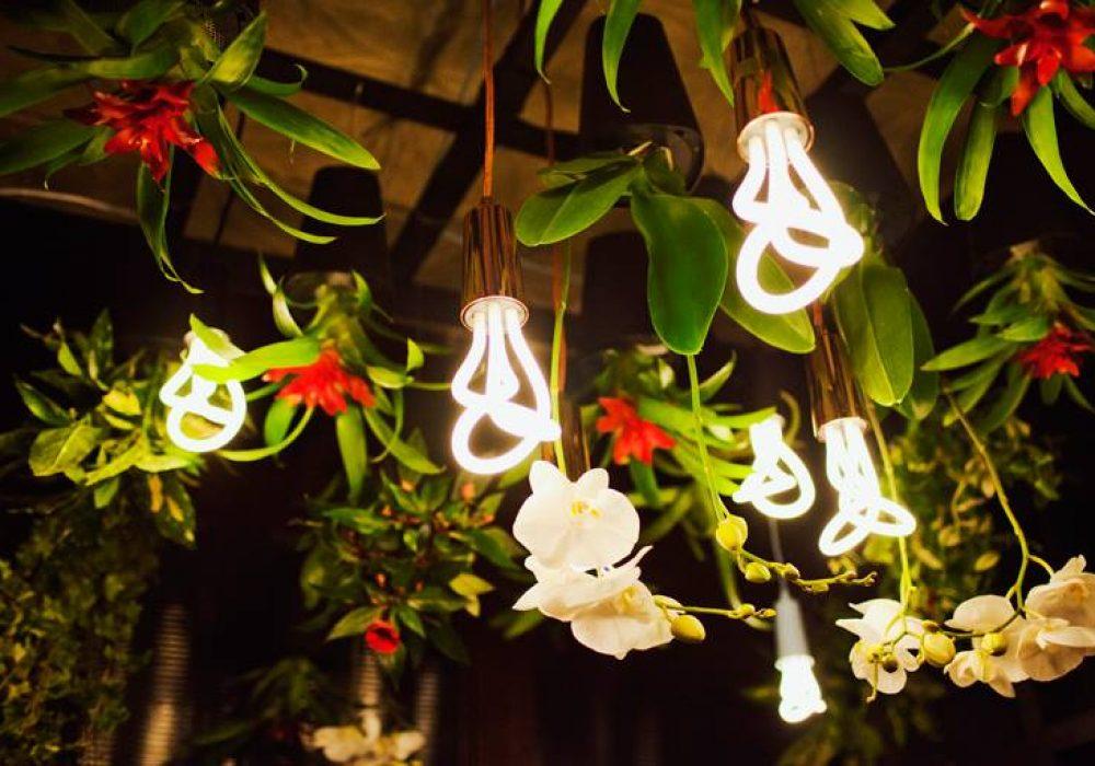 Plumen Designer Light Bulb Trendy Home Design