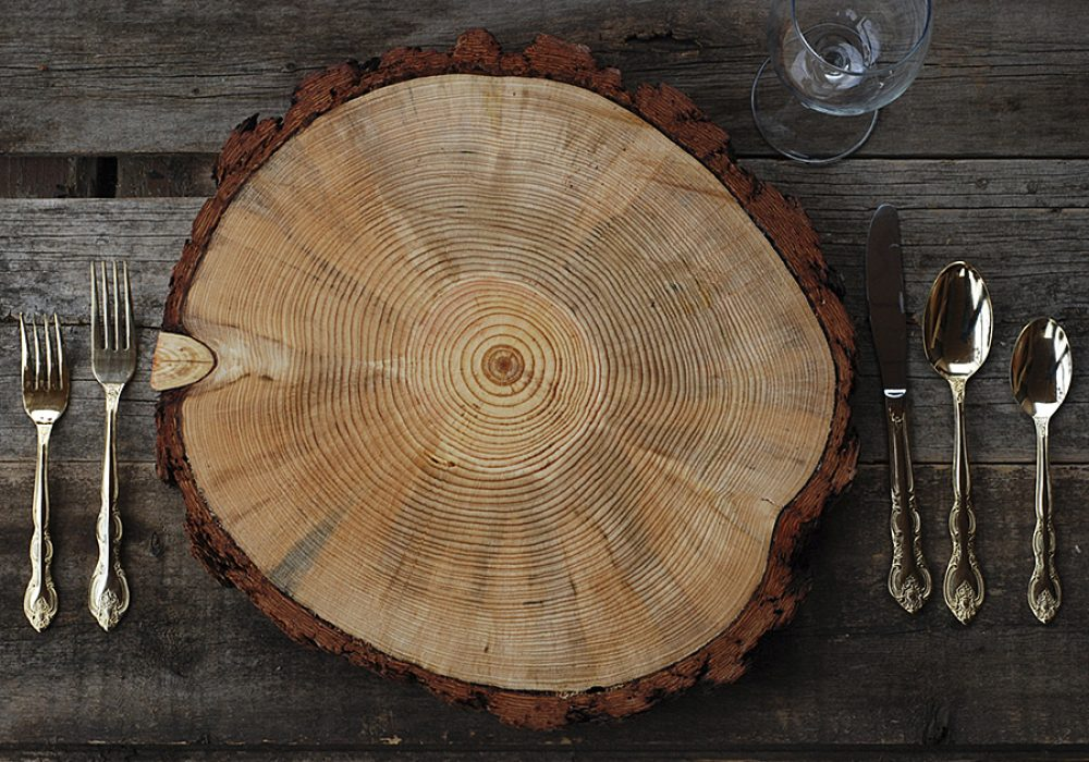 postscripts-rustic-wood-tree-slice-charger-pine-chargers