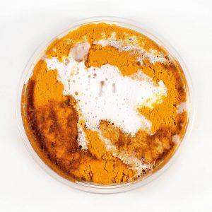 Pumpkin Caramel Swirl Scented Slime