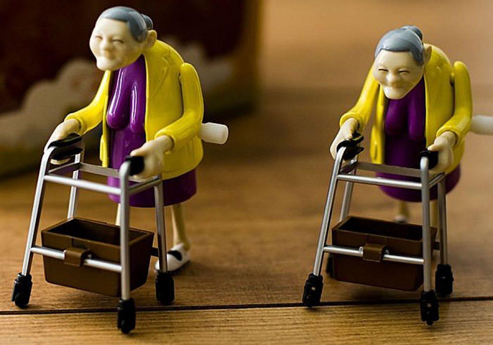 Racing Grannies Funny Gag Gift Idea