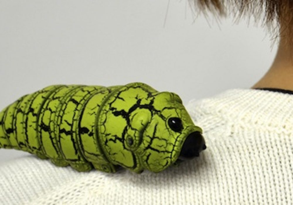 Raji Konchu RC Caterpillar Bug Cool Gift Ideas