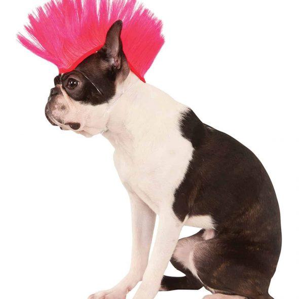 Rubies-Costume-Company-Pink-Mohawk-Pet-Wig.jpg