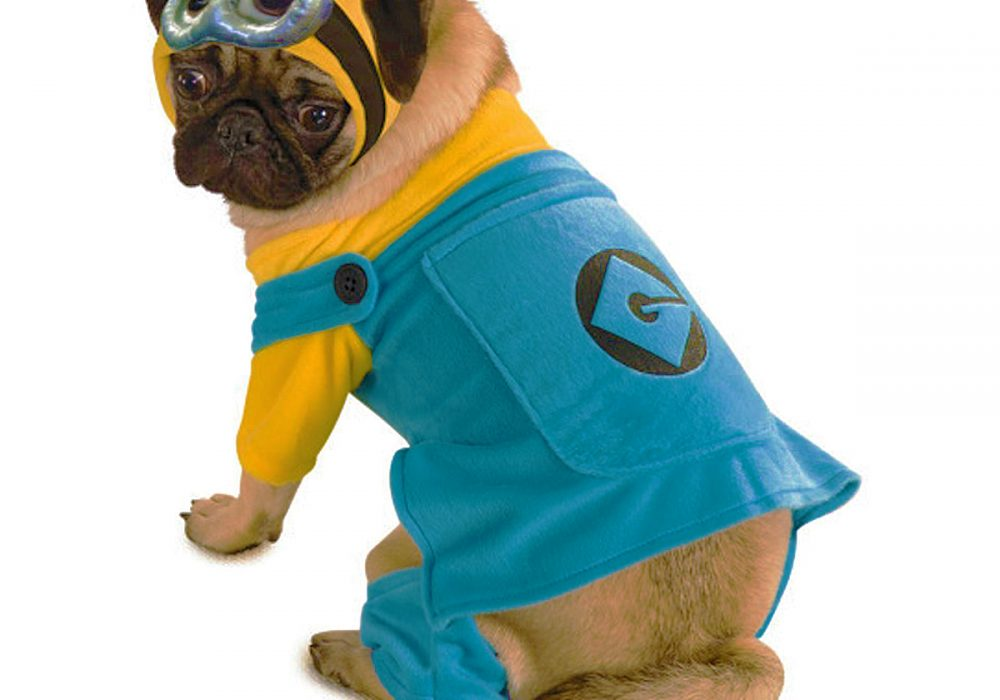 Rubies Costume Despicable Me Minion Printed Pet Costume for Cosplay and Halloween