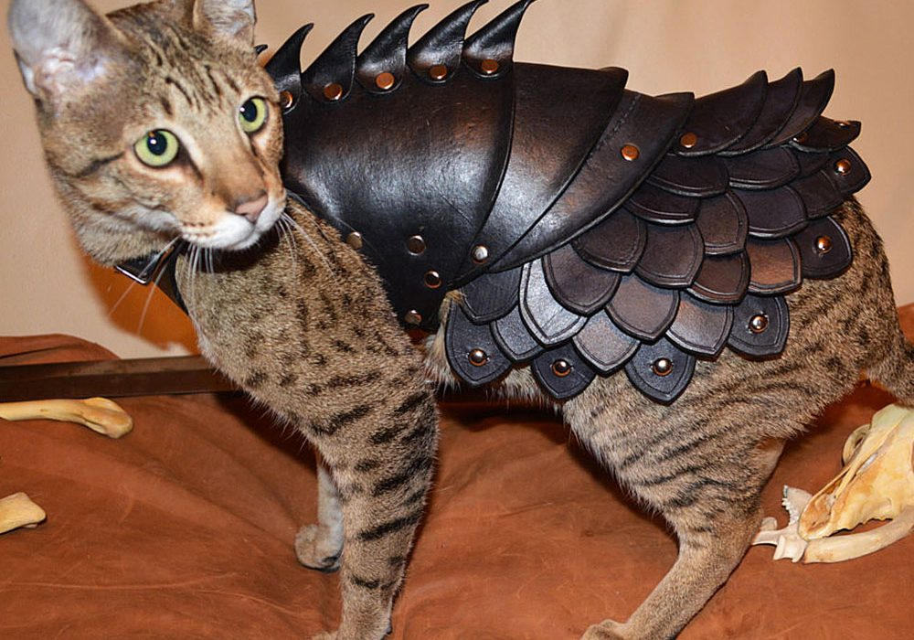 Savage Punk Cat Battle Armor Cool Animal Suit