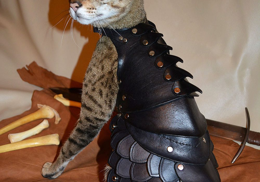 Savage Punk Cat Battle Armor Gift Idea for Cat Lovers