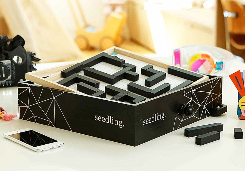 seedling-design-your-own-marble-maze-brain-exercise