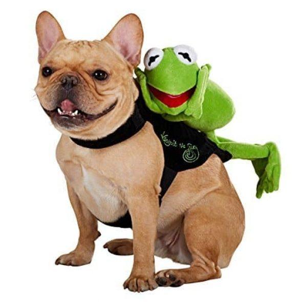 Sesame-Street-Kermit-the-Frog-Rider-Dog-Costume.jpg