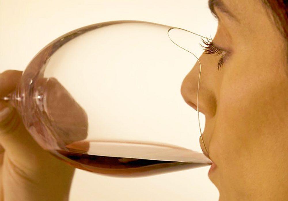 Silhouette Sense-enhancing Wine Glass Cool House Warming Gift Idea