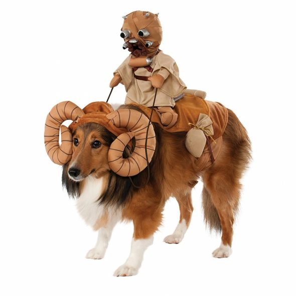 Star-Wars-Bantha-Pet-Costume.jpg
