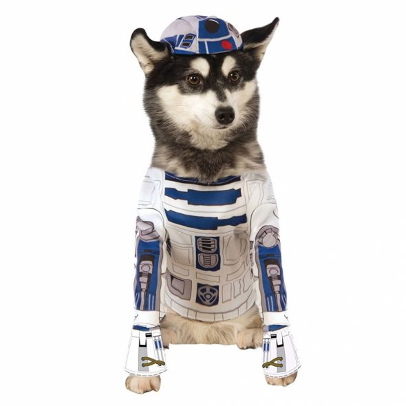 Star-Wars-R2-D2-Dog-Costume.jpg