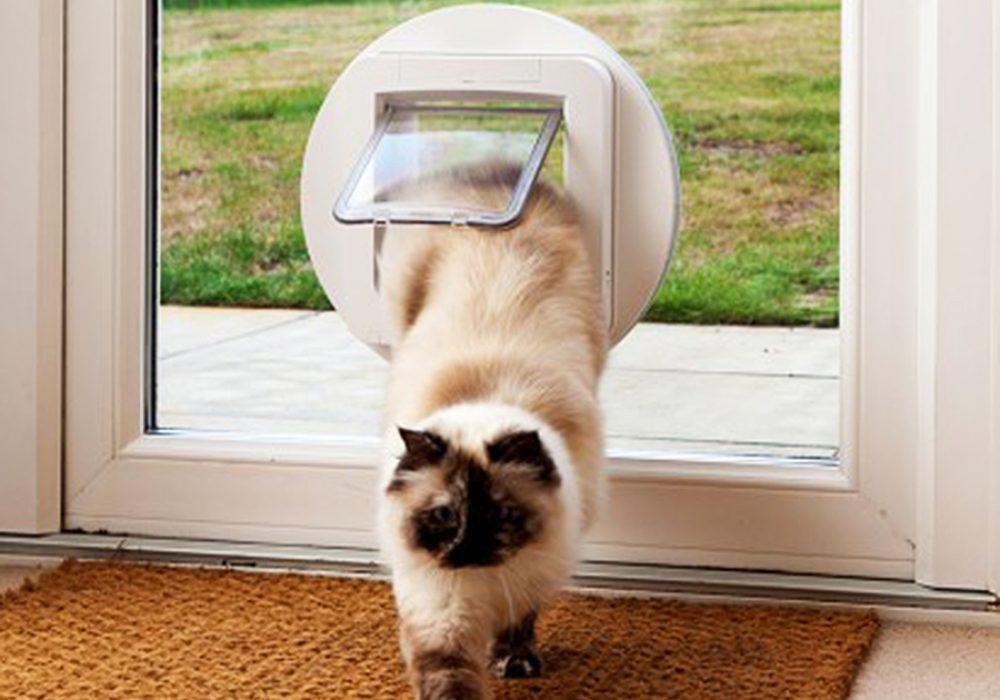 sureflap-microchip-pet-door-compatible-with-microships-formats-worldwide
