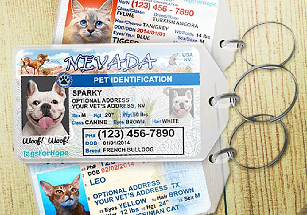 Tags for Hope Personalized Driver's License Pet Tag Gift Idea For Dog Lover
