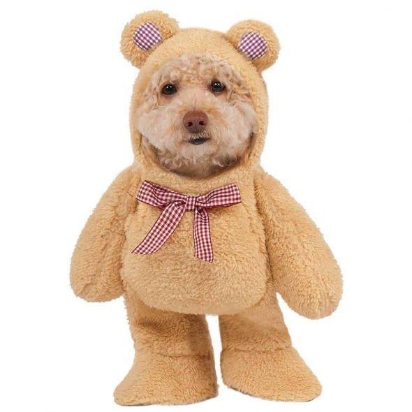 Teddy-Bear-Pet-Suit.jpg