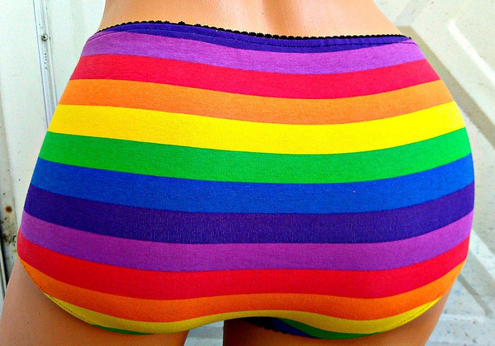 the-geek-garden-rainbow-flag-stripe-ladies-panties-handmade-item