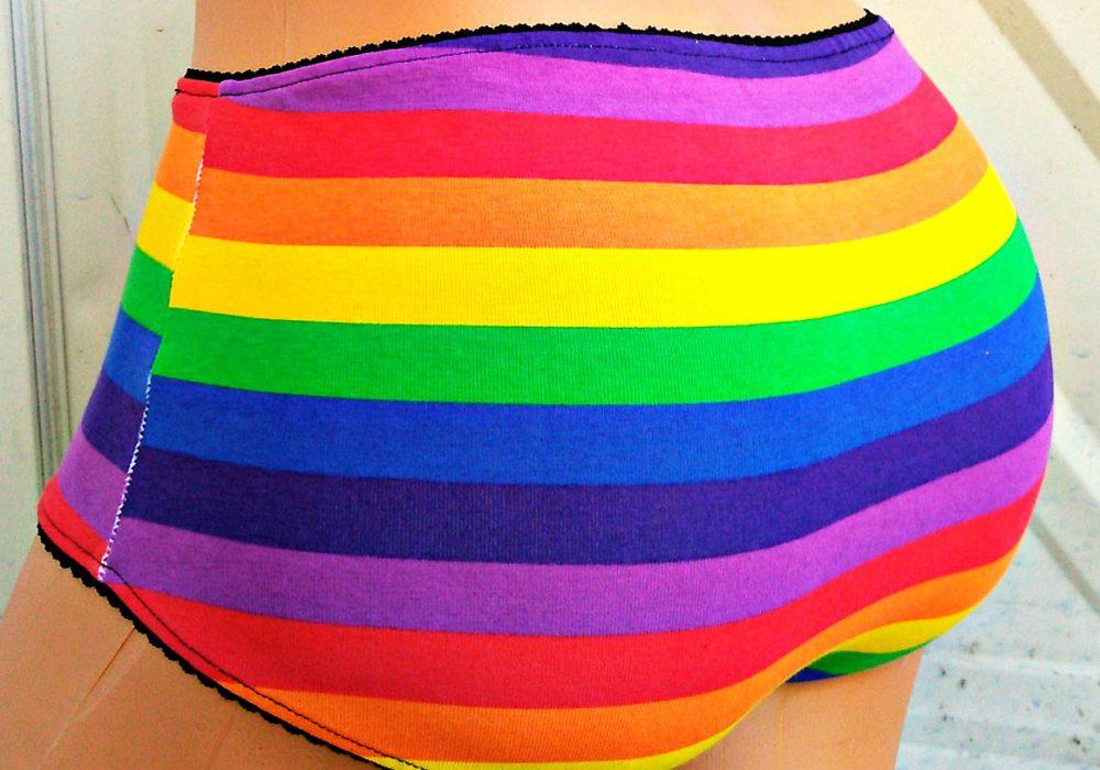 the-geek-garden-rainbow-flag-stripe-ladies-panties-under-garment
