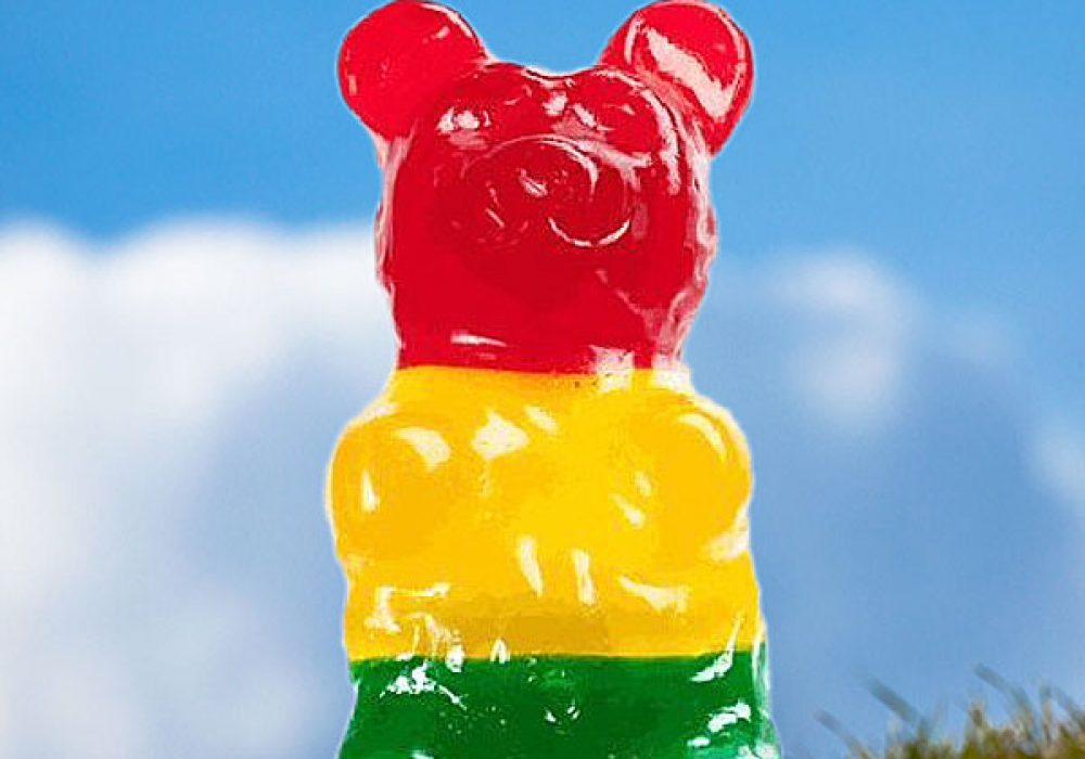 The-Worlds-Largest-Gummy-Bear-Awesome-Gift-to-Buy-Kids