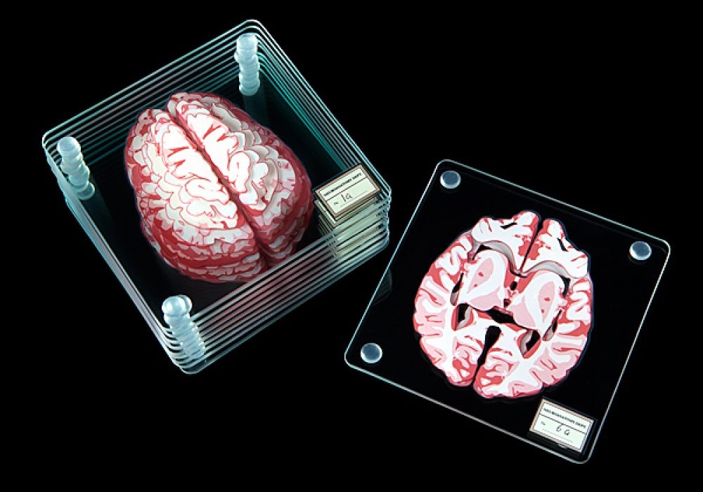 ThinkGeek Brain Specimen Coasters Gift Idea for Teachers
