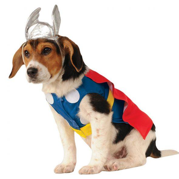 Thor-Pet-Costume.jpg