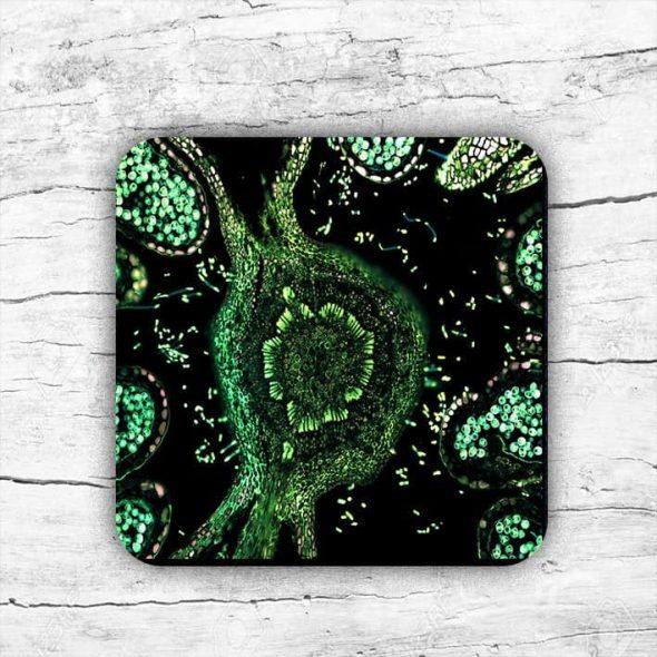 TwoPunksPrinting Cells Nature Coaster Mug