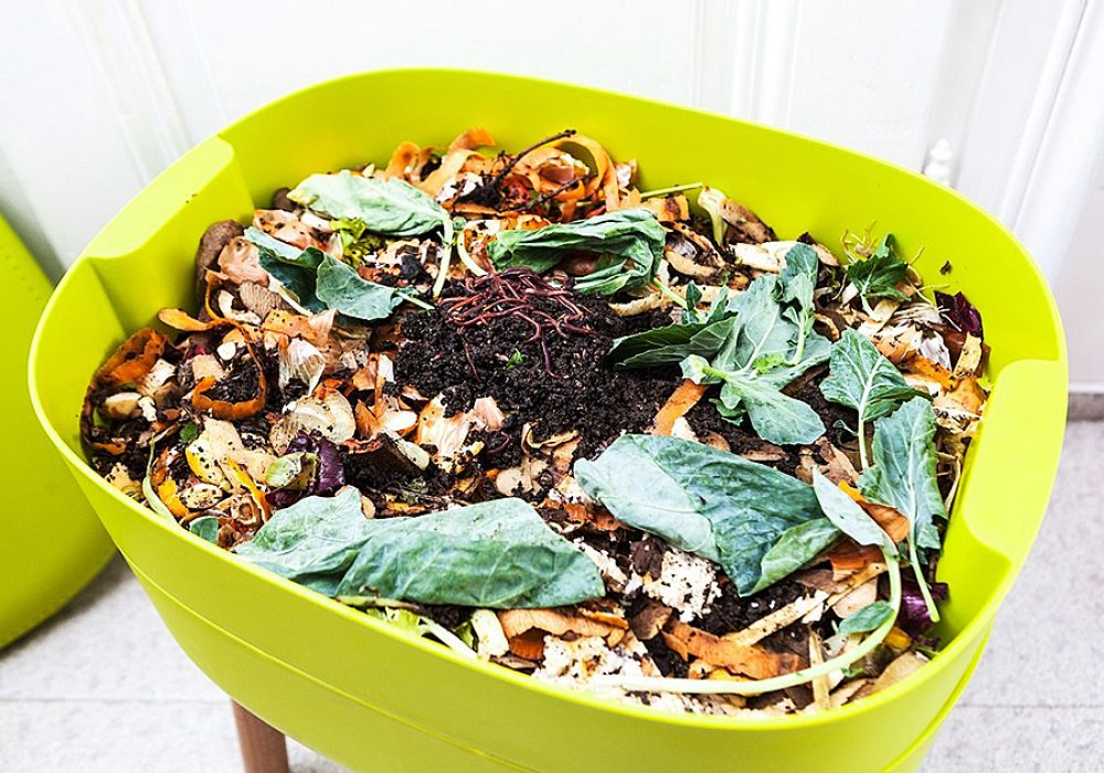 Urbalive Indoor Worm Farm Organic Compost