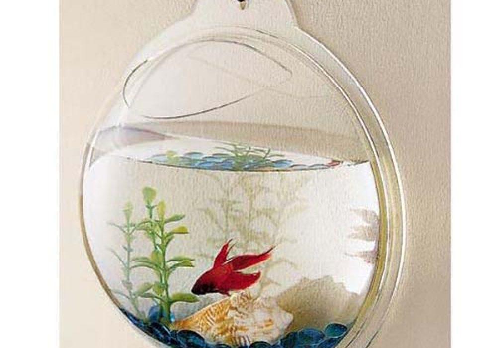 Wall Fish Bubble Minimalistic Design Aquarium