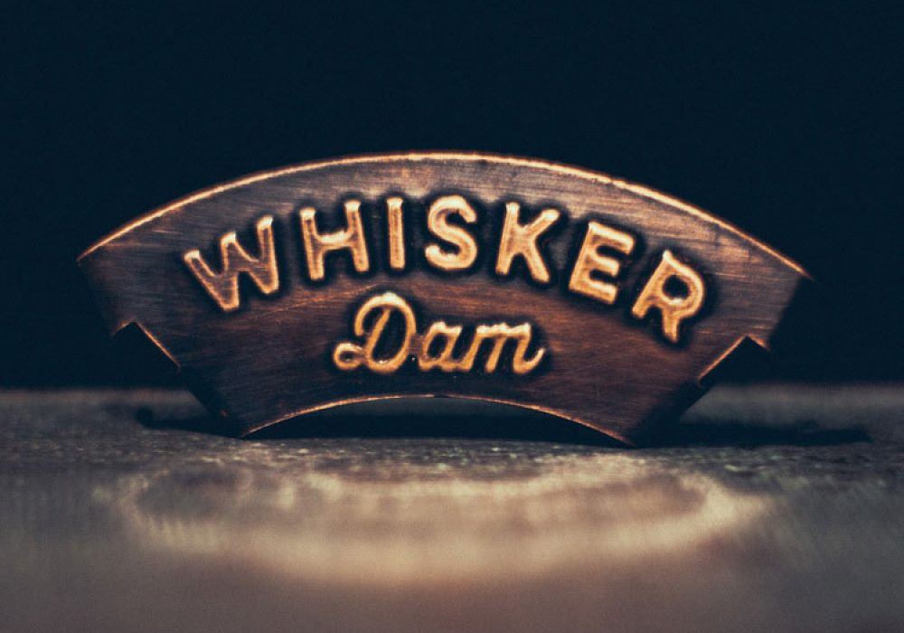 Whisker Dam Mustache Guard Cool Gift to Buy