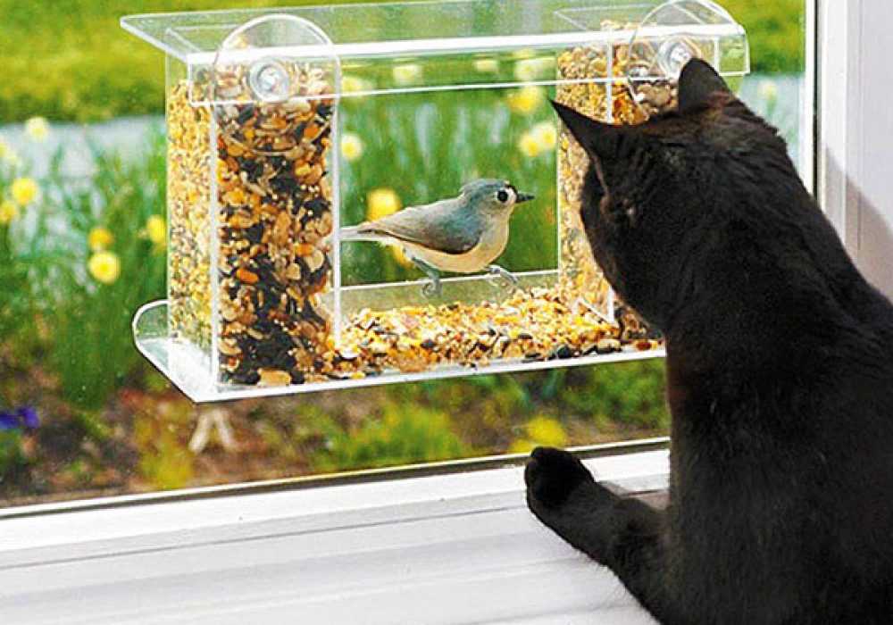 Wind & Weather One Way Mirror Birdfeeder House Warming Gift Idea