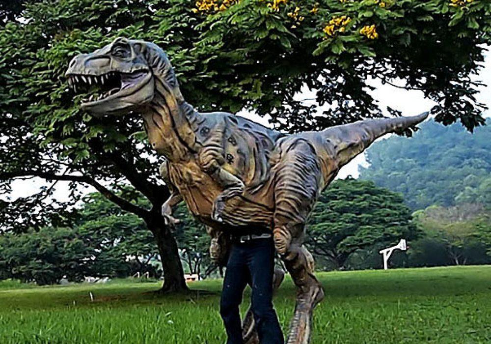 Wizart Studio Baby T-rex Costume Expensive Stuff to Buy