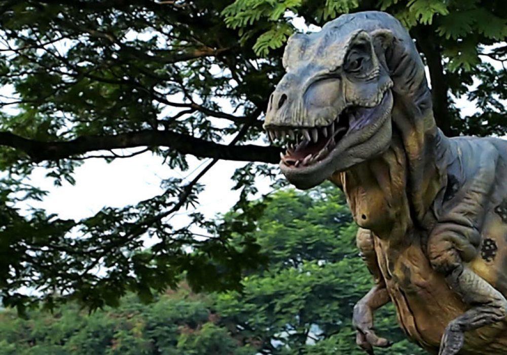 Wizart Studio Baby T-rex Costume Realistic
