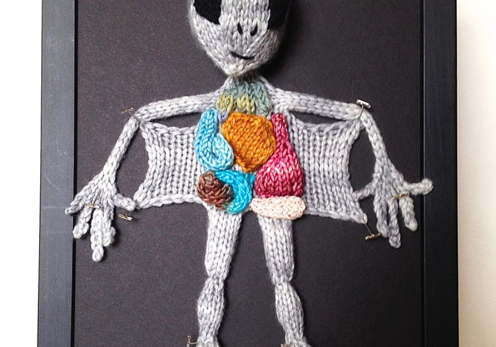 aKNITomy Knitted Alien Autopsy Nice Christmas Present